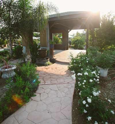 Home Sterling Gardens Nursery